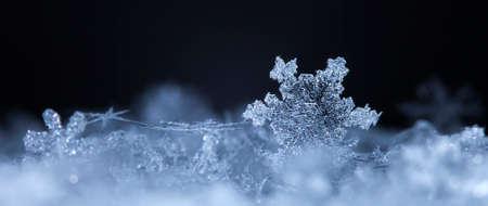 自然雪、雪片が低温で自然な条件の下で、降雪時の本物の雪を写真します。