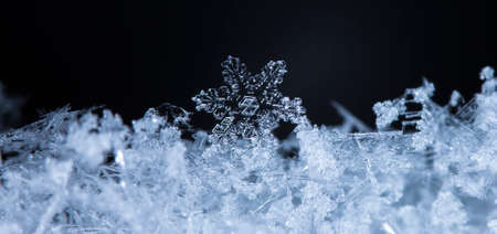 natural snowflakes on snow, photo real snowflakes during a snowfall, under natural conditions at low temperature 스톡 콘텐츠