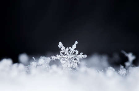 natural snowflakes on snow 写真素材