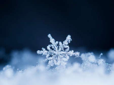 natural snowflakes on snow Фото со стока