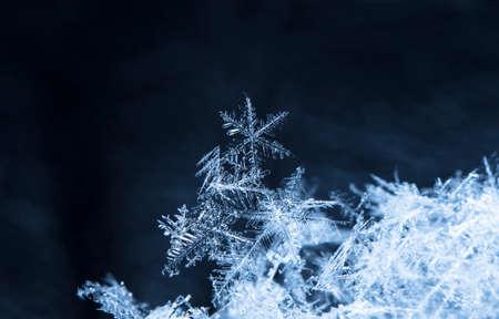 natuurlijke sneeuwvlokken op sneeuw. de foto is gemaakt bij een temperatuur van -10 ° C