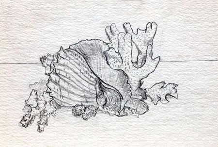 Manga style illustration, sketch