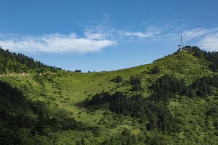 Shennongjia scenery