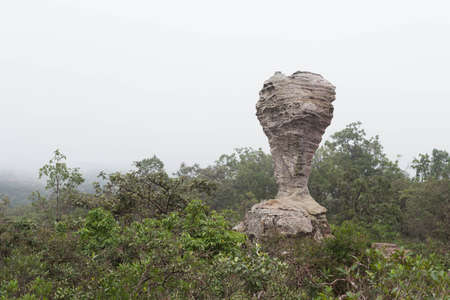 Rock in Pa Hin Ngam National Park.