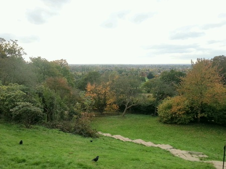 London aerial view from King Henrys Mound Richmond Park