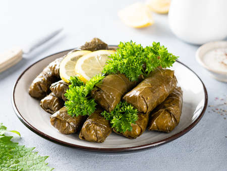 Dolma, traditional Caucasian, Turkish and Greek cuisine Reklamní fotografie - 154077005