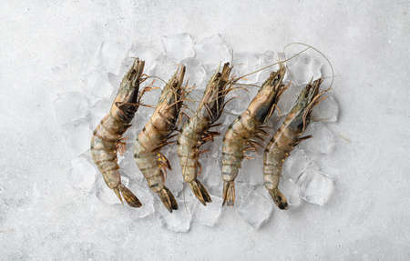 raw black tiger prawns on ice on a concrete background, top view, selective focus
