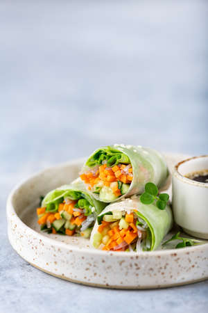 Vegetarian vietnamese spring rolls with carrots, cucumber, green onions and rice noodles, selective focus