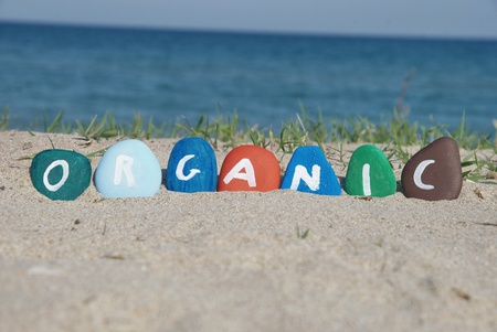 organic word painted on colourful pebbles Stock Photo
