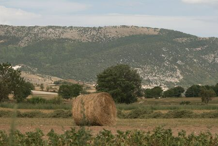 hayroll: country landscape with bale of hay