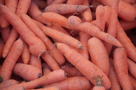 carottes biologiques sur le march� de l'espace ouvert