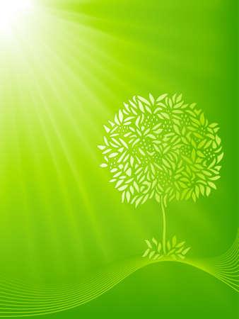 milagros: Shiloutte estilizado �rbol en una r�faga de luz verde de fondo. 5 mundial colores, mezclas, y m�scaras de recorte lineal de gradiente. Vectores
