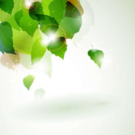 overlying: Overlying leaves with sun light breaking trough in the upper left corner of the background.