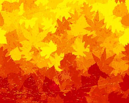 haya: Arce, roble, casta�o y hojas de haya en amarillos saturados, naranjas y rojos que forman un fondo colorido de la ca�da. Grunge elementos que dan una sensaci�n angustiada. Espacio para el texto Vectores