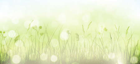 Grass border with faintly visible light blue sky in horizontal, panorama format. Blurry light dots, light effects and partly disaturated colors give it a dreamy feeling for the spring, easter season.