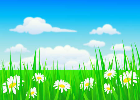 vector illustration of nature background with grass and flowers