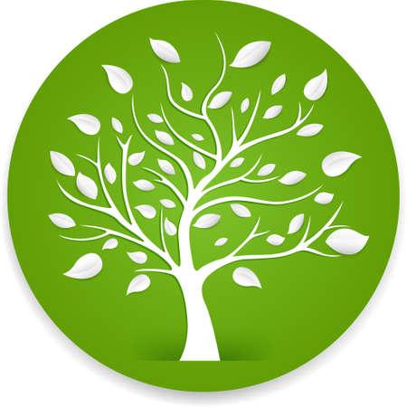 feuille arbre: arbre