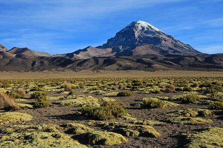 Sajama mountain in the National Park, Bolivia, near boarder to Chile Stock Photo