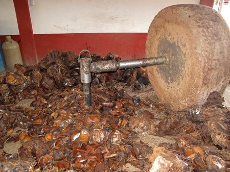 crushing: Millstone crushing the maguey plants, Mezcal production, Oaxaca, Mexico