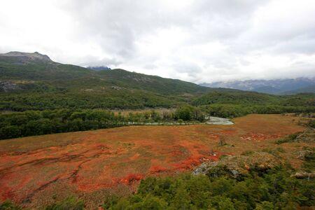 Autumn colored landscape near Fagnano lake along the road to Puerto Williams, Tierra Del Fuego, Patagonia, Chile