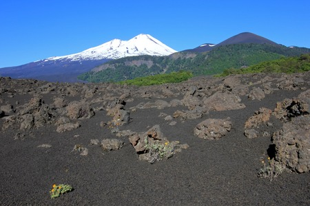 Snow capped peak of Volcano Llaima, Conguillio National Park, Chile, South America