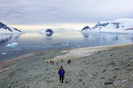 Group of hikers with gentoo penguins around, Antarctic Peninsula, Antarctica Stock Photo
