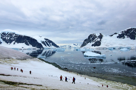 Group of hikers with gentoo penguins around, Antarctic Peninsula, Antarctica Reklamní fotografie