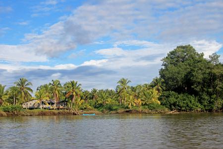 fibra de vidrio: Barcos de pesca tradicionales y casas, río Cayapas, provincia de Esmeraldas, Ecuador, América del Sur Foto de archivo