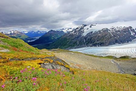 Exit Glacier, Harding Ice Field, Kenai Fjords National Park, Alaska, USA 스톡 콘텐츠
