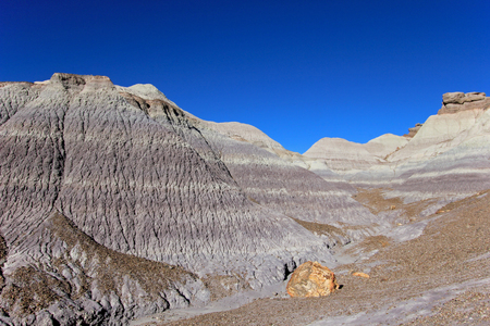 Badlands landscape with tree trunks in Petrified Forest National Park, Arizona, USA Stock Photo