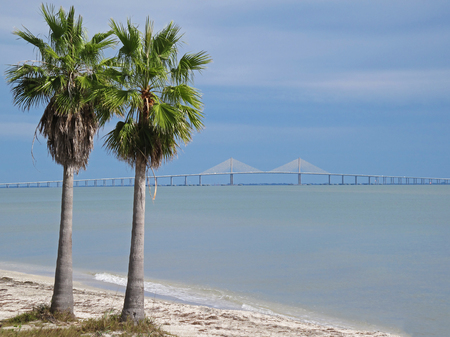 Sunshine Skyway Bridge crossing Tampa Bay in Florida with palm trees in the foreground, Florida, USA Stock Photo