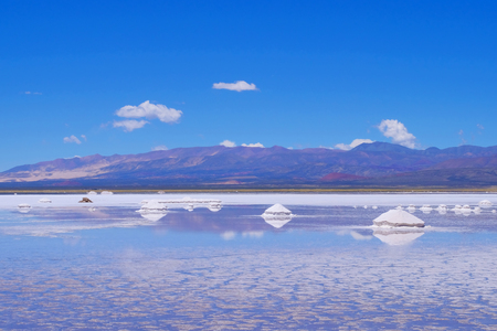 Salinas Salitral Grandes, great salt lake desert, near Susques, Jujuy Province, Argentina, South America 版權商用圖片 - 102948924