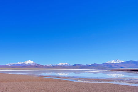 Beautiful green and blue lagoon Laguna Brava, a salt lake in the Argentine Andes, near Paso Pircas Negras, La Rioja, Argentina, South America