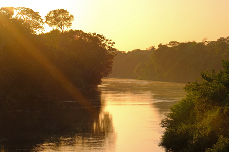 Densely forested shores of the Aquidauana river in the brazilian Pantanal at sunset, Aquidauana, Mato Grosso Do Sul, Brazil, South America Stok Fotoğraf