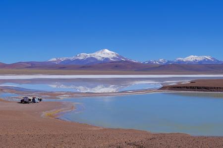Beautiful green and blue lagoon Laguna Brava, a salt lake in the Argentine Andes, near Paso Pircas Negras, La Rioja, Argentina, South America