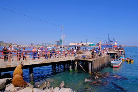 SAN ANTONIO, CHILE, APRIL 14, 2018: Tourists watching the sea lion at the colorful harbor port of San Antonio and the City, Valparaiso, Chile, South America on April 14, 2018 新聞圖片