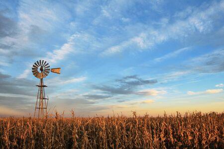 Wiatrak westernowy w stylu teksańskim o zachodzie słońca, ze złotym polem zboża na pierwszym planie, Argentyna, Ameryka Południowa