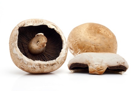 Portobello mushrooms on white background