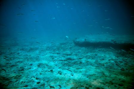 beneath the surface: Adriatic sea underwater view beneath surface Stock Photo