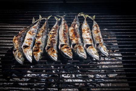 coal fish: Fresh  blue mackerel grilled Stock Photo