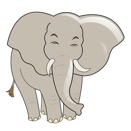 ivory:  elephant Illustration