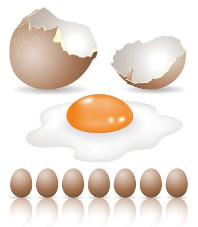 eggshells: los lotes de huevos para el desayuno aislados en blanco
