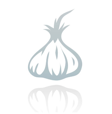 Line art garlic isolated on white Vector