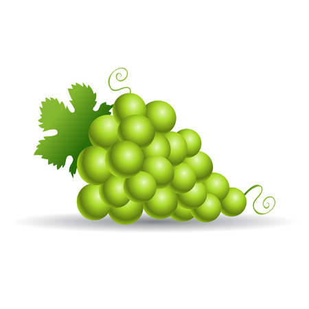 cluster: Green grapes with leaves isolated on white