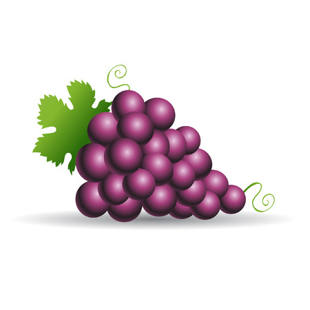 bunch of grapes: Purple grapes with green leaves isolated on white