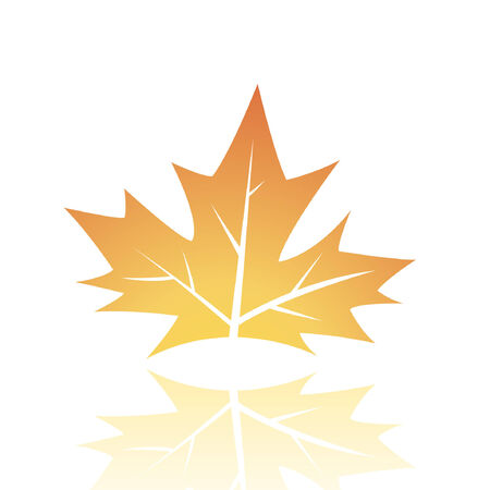 Brown leaf isolated on white Stock Vector - 7276514