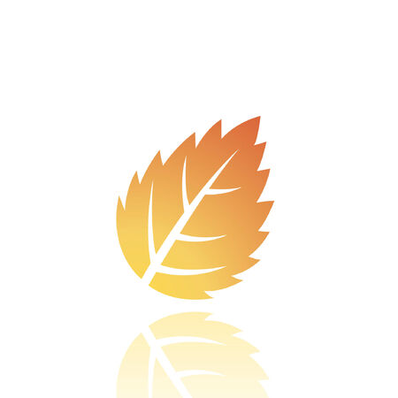 Brown leaf isolated on white Stock Vector - 7276424