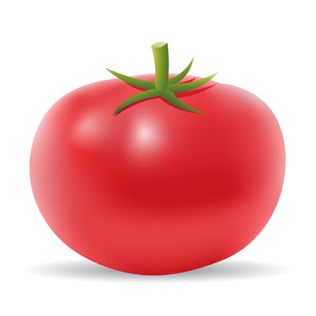 3d tomato isolated on white Illustration