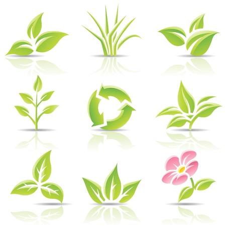 bladeren: pictogrammen van bladeren en een bloem