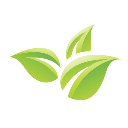 緑光沢のある葉のアイコン、白い背景で隔離のイラスト